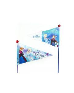 Disney Frost flag