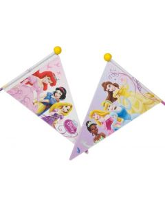 Disney Princess flag